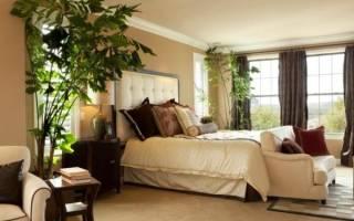 Благоприятные цветы для спальни