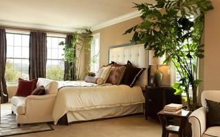 Какие цветы поставить в спальне