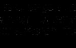 Кактус пахиподиум