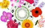 Цветы знаков зодиака